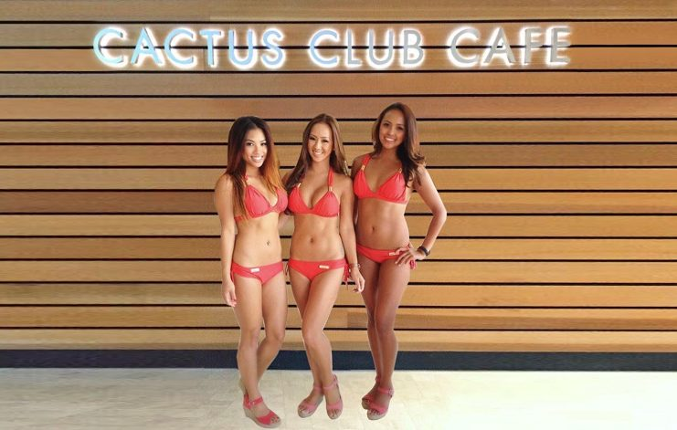 Cactus Club bikinis to be sold in all restaurants too