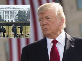 Suspicious Package Sent To Trump Believed To Contain Books, Condoms | Suspicious Package Trump